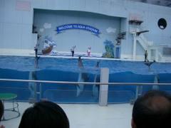 Seapara20070504_09